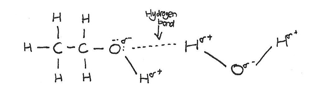 hydrogen_bond