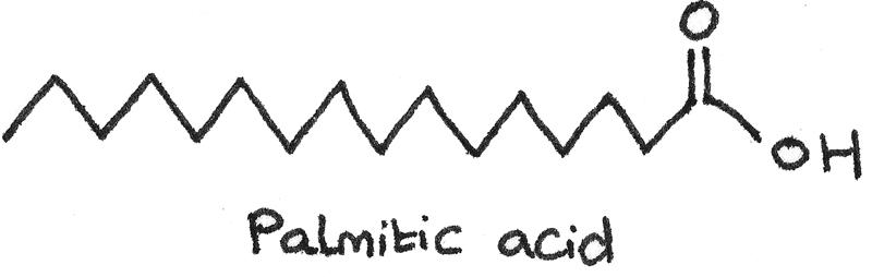 Palmitic acid in skeletal formula.