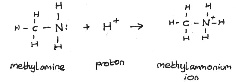 Methylamine and proton reaction.