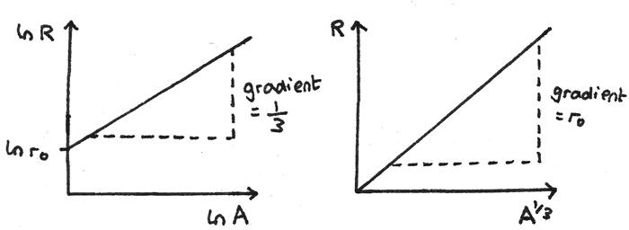 RA_graphs