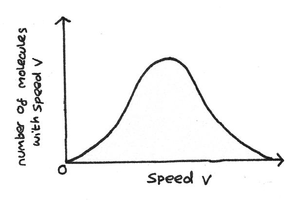speed_distribution